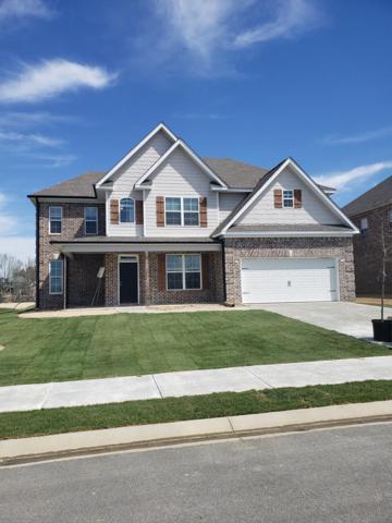 223 Callahan Drive, Evans, GA 30809 (MLS #435127) :: Venus Morris Griffin | Meybohm Real Estate