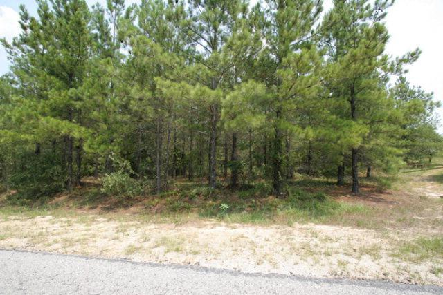 0 Barford Road, Edgehill, GA 30810 (MLS #325520) :: Melton Realty Partners