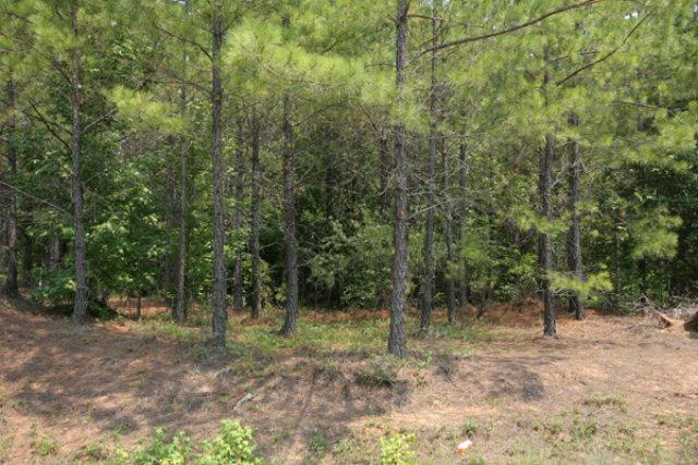 0 Barford Road, Edgehill, GA 30810 (MLS #325521) :: Melton Realty Partners