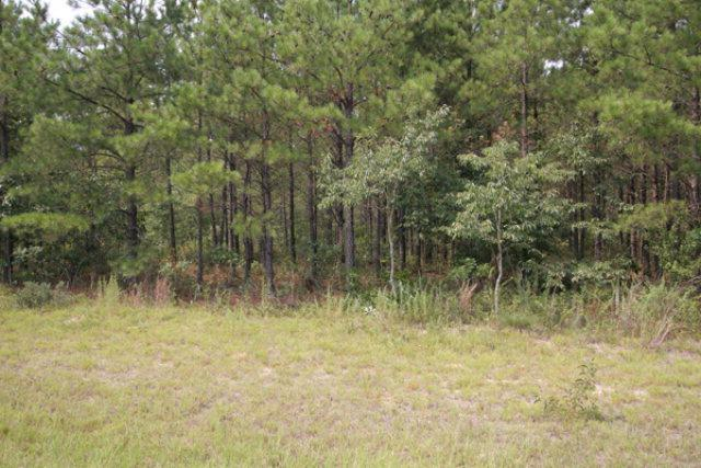 0 Edgehill Avera Road, Edgehill, GA 30810 (MLS #325526) :: Melton Realty Partners