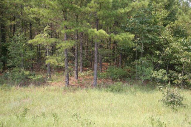 0 Edgehill Avera Road, Edgehill, GA 30810 (MLS #325529) :: Melton Realty Partners