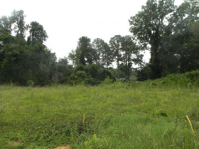 000 Bobs Alley, Thomson, GA 30824 (MLS #351922) :: Shannon Rollings Real Estate