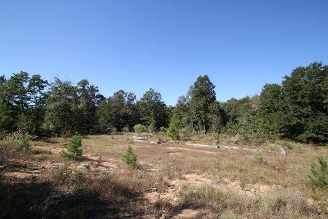 2979 Old Lodge Road, Hephzibah, GA 30815 (MLS #367103) :: Melton Realty Partners