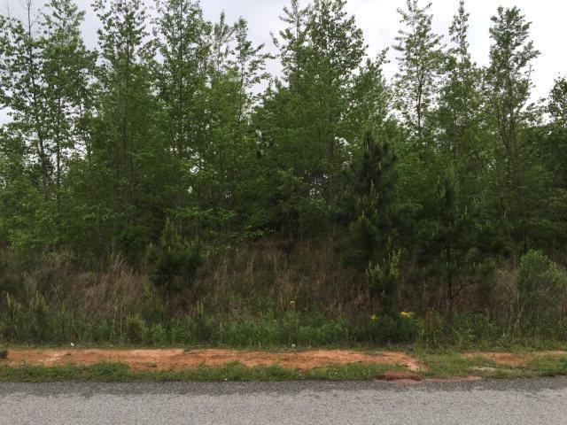 1328 Oak Ridge Plantation Road, Hephzibah, GA 30815 (MLS #385460) :: Melton Realty Partners