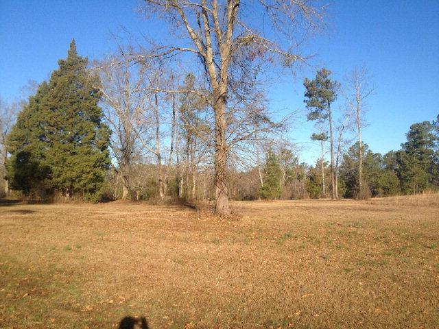 0 Woodhaven Drive, Clarks Hill, SC 29821 (MLS #393393) :: Shannon Rollings Real Estate