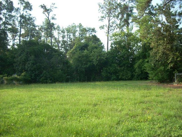 2908 Lee Street, Augusta, GA 30909 (MLS #394256) :: Shannon Rollings Real Estate