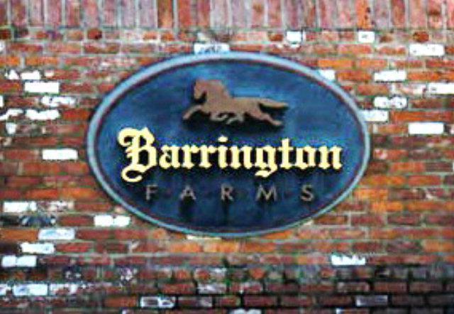 Lot 3B-2 Barrington Farms Dr., Aiken, SC 29803 (MLS #395998) :: Shannon Rollings Real Estate