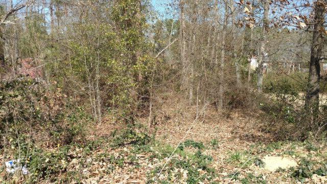 262 Graystone Drive, Beech Island, SC 29842 (MLS #396949) :: Shannon Rollings Real Estate