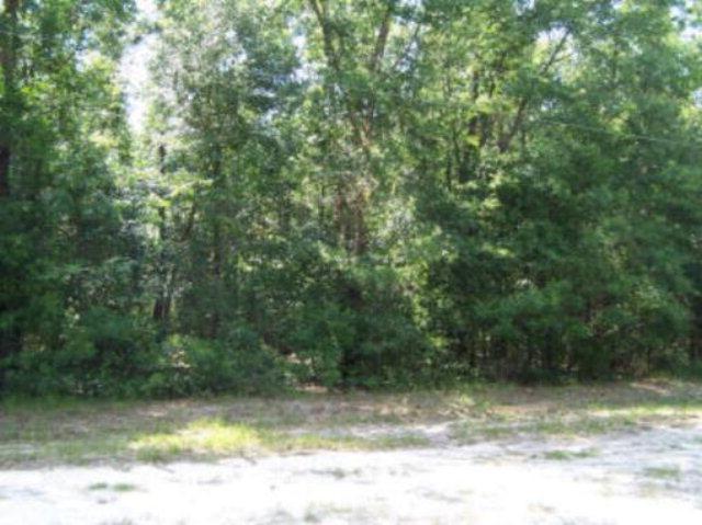 7329 Lakeside Drive, Appling, GA 30802 (MLS #399294) :: Brandi Young Realtor®