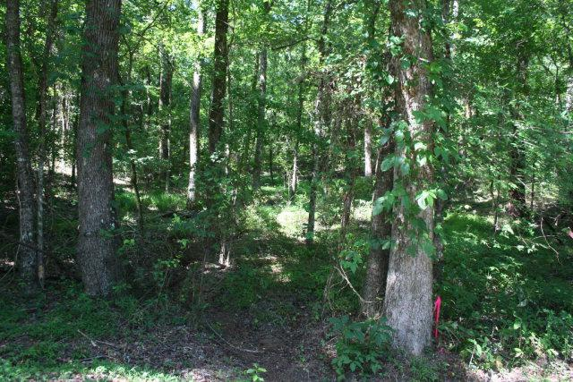 Lot B-5 Elijah Clark Drive, Lincolnton, GA 30817 (MLS #401491) :: Southeastern Residential