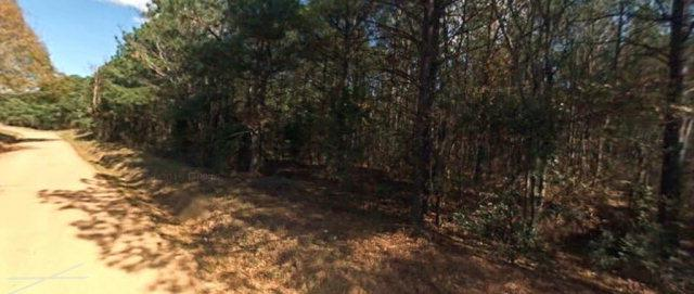 33 Kemp Road, Edgefield, SC 29824 (MLS #408323) :: Young & Partners