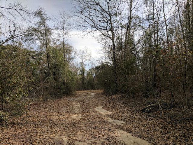 0 Gene Howard Road, Wrens, GA 30833 (MLS #409379) :: Shannon Rollings Real Estate