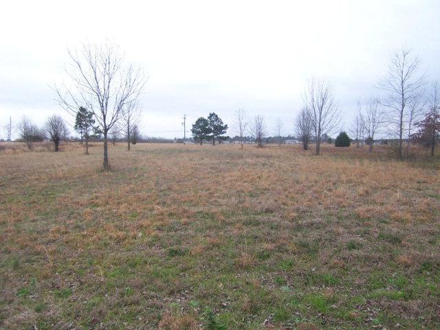 3581 Hwy 88, Blythe, GA 30805 (MLS #409420) :: Shannon Rollings Real Estate
