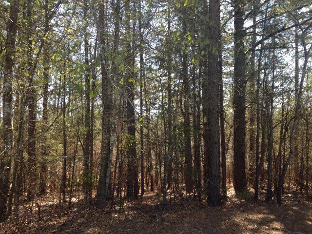 35 Ashton Pointe Drive, North Augusta, SC 29841 (MLS #410508) :: Shannon Rollings Real Estate