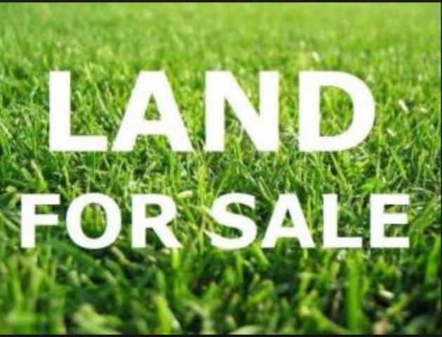 00 Sawdust Road, Harlem, GA 30814 (MLS #411187) :: Melton Realty Partners