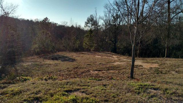 174 Forrest Drive, Jackson, SC 29831 (MLS #411971) :: Shannon Rollings Real Estate
