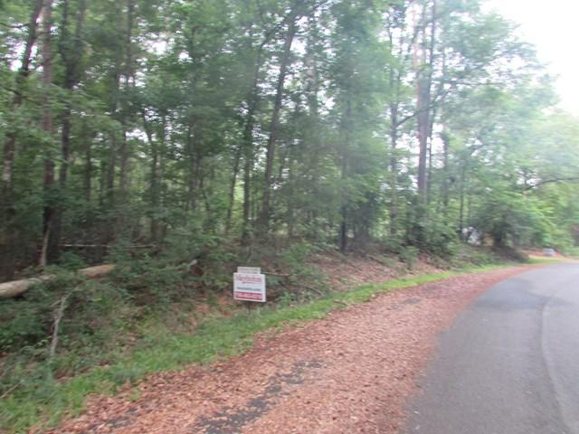 Lot 15 Paradise Street, Lincolnton, GA 30817 (MLS #414805) :: Melton Realty Partners