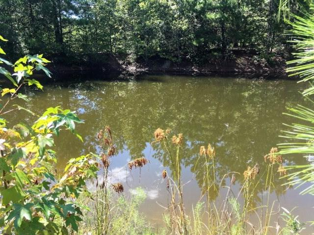 312 Cumbee Trail Road, Ridge Spring, SC 29129 (MLS #414859) :: Shannon Rollings Real Estate
