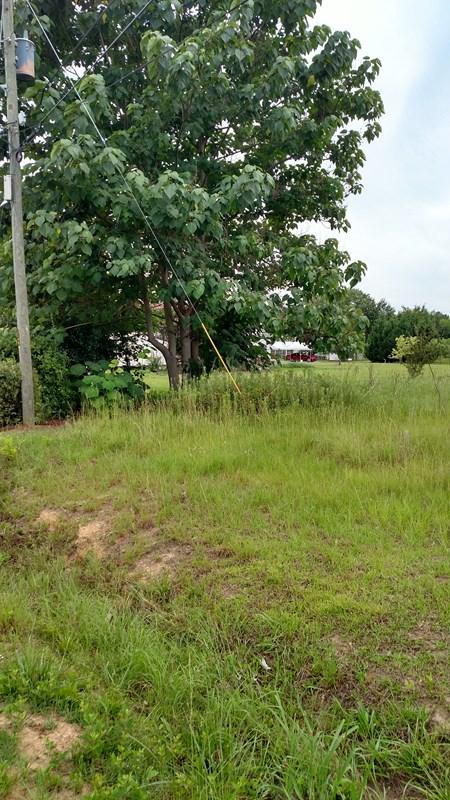 lot 24 Canterbury Drive, Wrens, GA 30833 (MLS #415250) :: The Starnes Group LLC