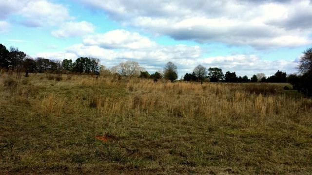 Lot 12 Cary Lane, Washington, GA 30673 (MLS #415707) :: Shannon Rollings Real Estate