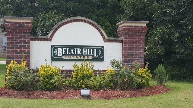 3920 Carolyn Street, Augusta, GA 30909 (MLS #417448) :: Shannon Rollings Real Estate