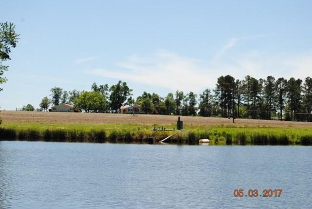 1004 Hwy 231, Harrison, GA 31035 (MLS #418282) :: Shannon Rollings Real Estate