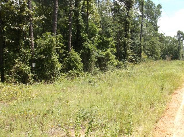 Lot #13 Keys Lane, Hephzibah, GA 30815 (MLS #418471) :: Brandi Young Realtor®