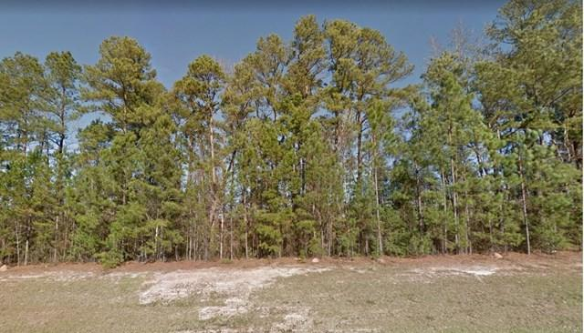 Parcels/ Green Hill Drive, Sardis, GA 30456 (MLS #418483) :: Shannon Rollings Real Estate