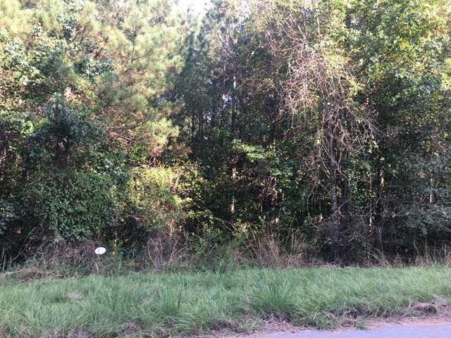 1021 Wild Azalea Drive, Lincolnton, GA 30817 (MLS #418745) :: Shannon Rollings Real Estate