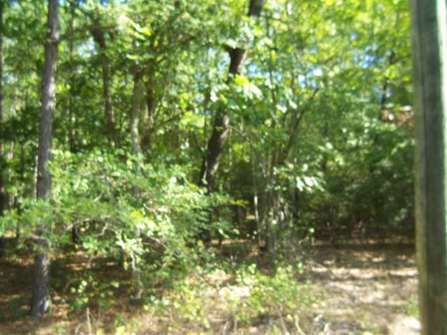 40 S Point Shores, Lincolnton, GA 30817 (MLS #418929) :: Shannon Rollings Real Estate