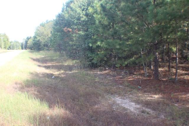 0 Hephzibah Keysville Road, Hephzibah, GA 30815 (MLS #419550) :: Shannon Rollings Real Estate