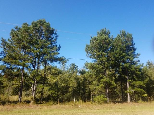 Girard, GA 30456 :: Southeastern Residential