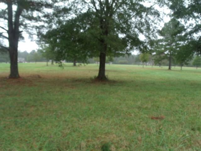 1033 Tanyard Creek Drive, Thomson, GA 30824 (MLS #419764) :: Natalie Poteete Team