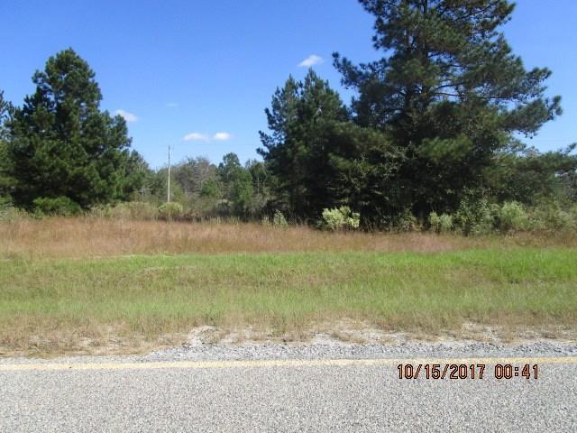 0 PA Thankful Church Road, Girard, GA 30426 (MLS #419846) :: Brandi Young Realtor®