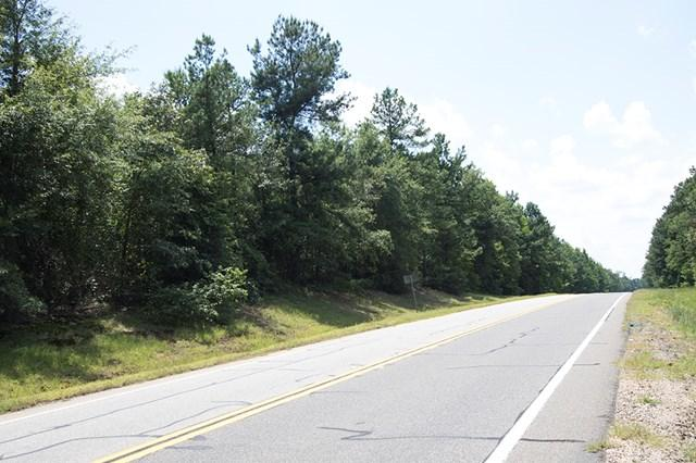 GA-80 Ga Hwy 80, Keysville, GA 30816 (MLS #420130) :: Shannon Rollings Real Estate