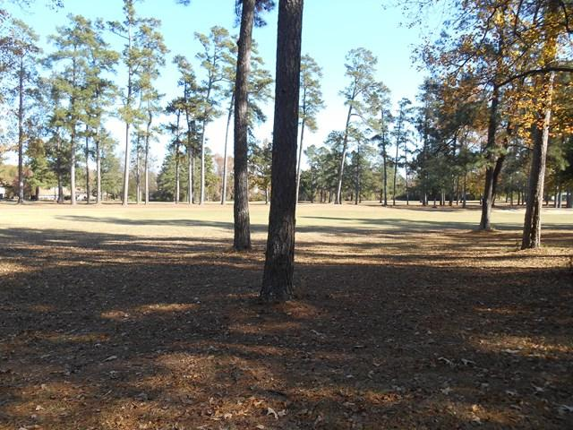 2107 Southlake Pkwy, Augusta, GA 30906 (MLS #421221) :: Shannon Rollings Real Estate