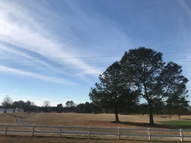 3.77 Ac. Double Branches Road, Lincolnton, GA 30817 (MLS #421696) :: Brandi Young Realtor®