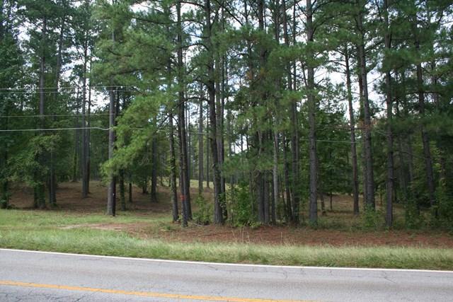 00 Dozier Road, Appling, GA 30802 (MLS #421954) :: Shannon Rollings Real Estate