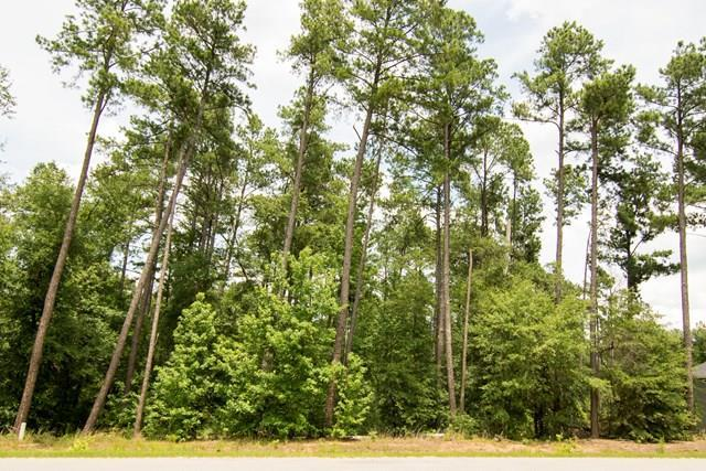 106 Ridge Pointe Drive, Waynesboro, GA 30830 (MLS #422165) :: RE/MAX River Realty