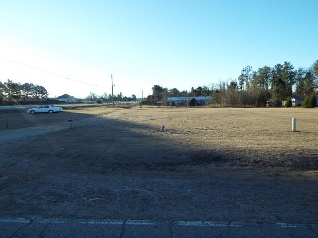 2002 Mims Road, Hephzibah, GA 30815 (MLS #422333) :: Shannon Rollings Real Estate