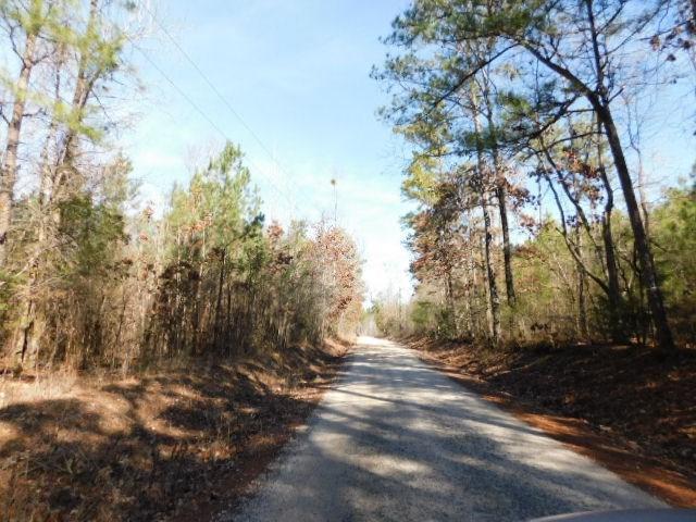 0 Ferguson Justice Road, Lincolnton, GA 30817 (MLS #422469) :: Shannon Rollings Real Estate