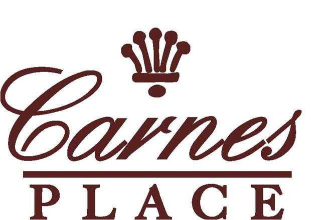 2111 Carnes Place, Augusta, GA 30909 (MLS #422795) :: Melton Realty Partners
