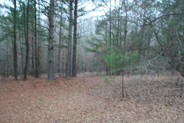 00 Hwy 378, Lincolnton, GA 30817 (MLS #423434) :: Shannon Rollings Real Estate