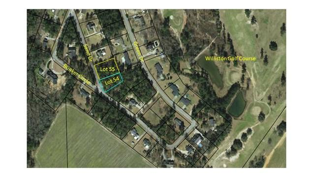 55 Blk B Sand Bar Ferry Road, Williston, SC 29853 (MLS #423758) :: Shannon Rollings Real Estate