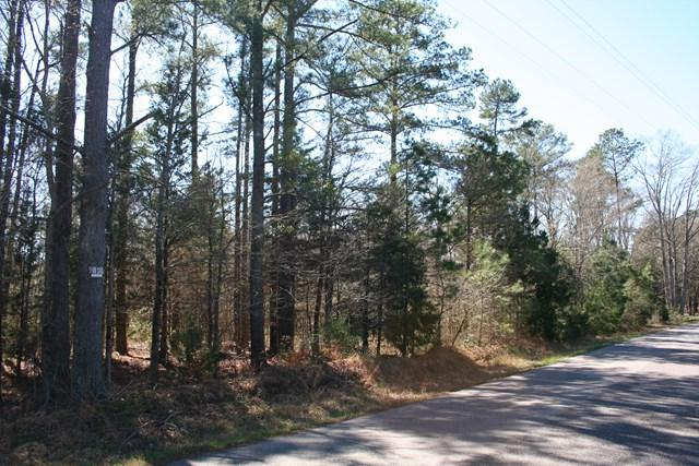 Lot # 3 Trulock Drive, Lincolnton, GA 30817 (MLS #423787) :: Brandi Young Realtor®