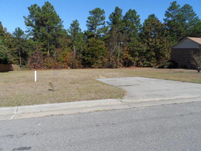 4321 Creek View Drive, Hephzibah, GA 30815 (MLS #424637) :: Brandi Young Realtor®