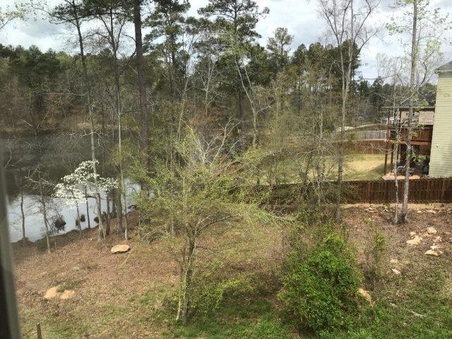 1541 Baldwin Lakes Drive, Grovetown, GA 30813 (MLS #424829) :: Venus Morris Griffin | Meybohm Real Estate