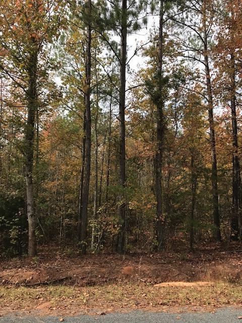 0 John Foxs Run, North Augusta, SC 29860 (MLS #425646) :: Shannon Rollings Real Estate