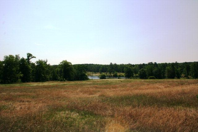 Lot 19 Tom Bartles Road, Appling, GA 30802 (MLS #426755) :: Melton Realty Partners