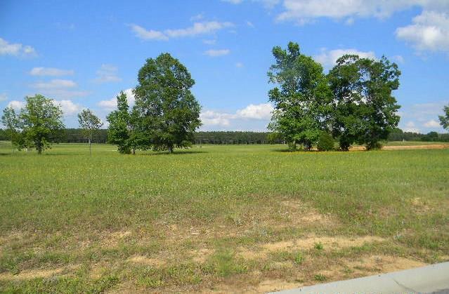 009 Peach Lane, Edgefield, SC 29824 (MLS #429177) :: Shannon Rollings Real Estate